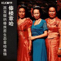 傣楼章哈——西双版纳傣族原生态章哈集锦 Folk Songs of the Dai Ethnic Minority  in Yunnan